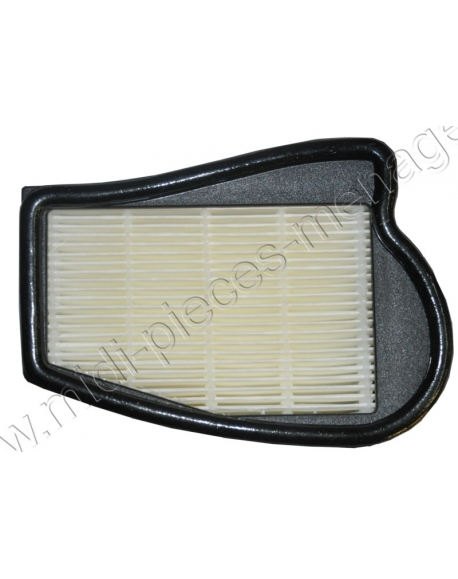 filtre hepa H12 lavable pour aspirateur electrolux sansac 1096879000