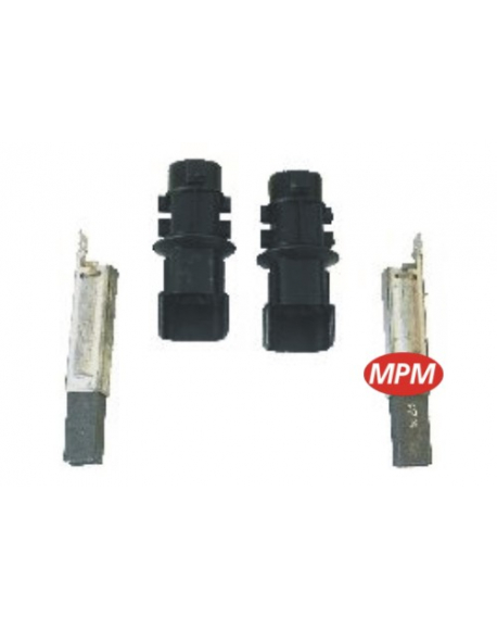 2 charbons + supports philips 481981728484