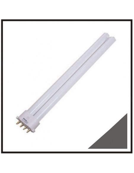Ampoule tube