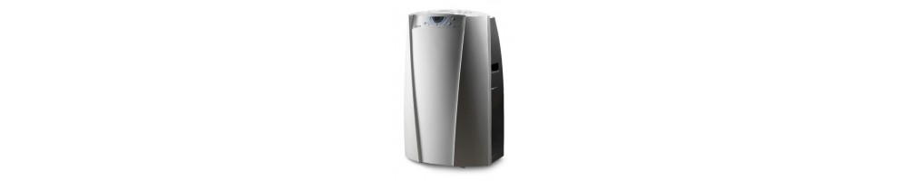 CLIMATISEUR PINGUINO DELONGHI SILENT PACT110A