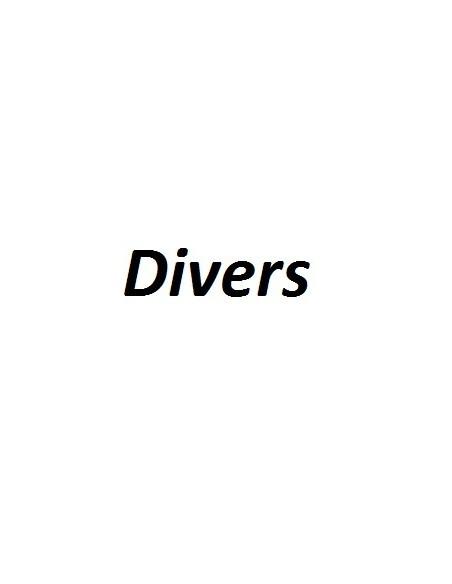 DIVERS BRAUN