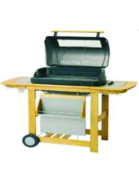 BARBECUE CAMPINGAZ RBS WOODY GRANDE et DELUXE