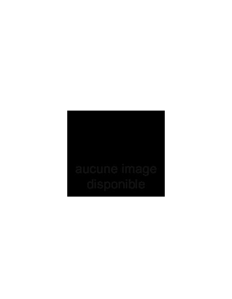 ASPIRATEUR AVEC SAC ELECTROLUX ULTRASILENCER ZUS3366